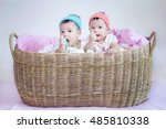 twin asia baby in a basket. | Shutterstock . vector #485810338