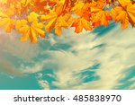 Autumn Nature Background With...