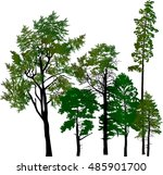 illustration with pine trees... | Shutterstock .eps vector #485901700