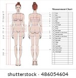 woman body measurement chart.... | Shutterstock .eps vector #486054604
