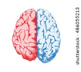 hand drawn human brain   top... | Shutterstock .eps vector #486055213