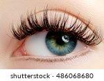 beautiful macro shot of female...   Shutterstock . vector #486068680