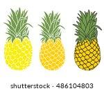 pineapple illustration ... | Shutterstock .eps vector #486104803