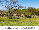 Beautiful Texas Hill Country...