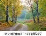 autumn forest. | Shutterstock . vector #486155290