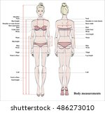 woman body measurement chart.... | Shutterstock .eps vector #486273010