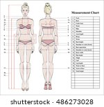 woman body measurement chart.... | Shutterstock .eps vector #486273028
