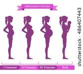 vector illustration of pregnant ... | Shutterstock .eps vector #486407443