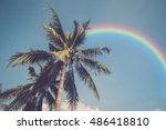 retro coconut tree and sky with ... | Shutterstock . vector #486418810