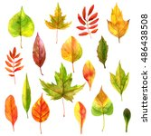 set of realistic autumn... | Shutterstock . vector #486438508