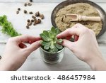 florist at work  how to make... | Shutterstock . vector #486457984