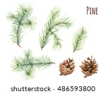 collection of pine branches and ...   Shutterstock . vector #486593800