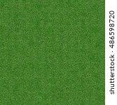 idyllic  seamless grass texture   Shutterstock . vector #486598720