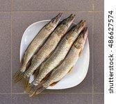 Fresh Fish Is Pike. Four Caugh...
