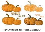 doodle pumpkins.vector paint...   Shutterstock .eps vector #486788800