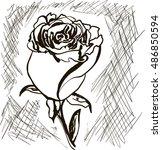 rose | Shutterstock .eps vector #486850594