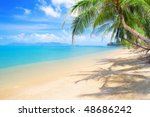 beach with coconut palm and sea | Shutterstock . vector #48686242