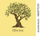 olive tree with branches and... | Shutterstock .eps vector #486879250