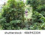 Monteverde  Costa Rica   May 2...