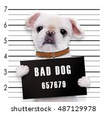 bad dog. | Shutterstock . vector #487129978
