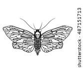 beautiful ornamental butterfly... | Shutterstock .eps vector #487151713