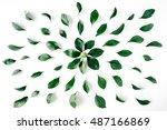 green leaves pattern on white... | Shutterstock . vector #487166869
