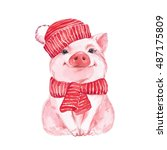 Funny Pig In A Red Hat And...