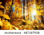 gorgeous autumn scenery in a... | Shutterstock . vector #487187938