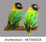 Masked Lovebird Green Drawing...