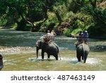 elephant trekking through... | Shutterstock . vector #487463149
