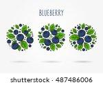 blueberry line art vector...   Shutterstock .eps vector #487486006