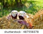 autumn decoration. | Shutterstock . vector #487558378