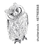 owl hand drawn  black and white ... | Shutterstock .eps vector #487980868