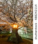 japan cherry blossom at night... | Shutterstock . vector #488242114