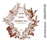 herbal tea herbs and flowers...   Shutterstock .eps vector #488289538
