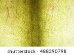 Algae  Green Algae On Wall ...