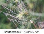Beautiful Cobwebs In Autumn In...