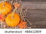Two Colorful Autumn Pumpkins O...