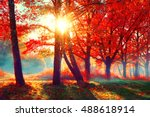 autumn. fall scene. beautiful... | Shutterstock . vector #488618914