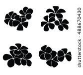 frangipani silhouettes for... | Shutterstock .eps vector #488670430