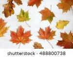 Flat Lay Of Fallen Maple Leave...