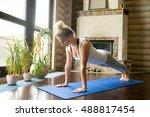 full length portrait of... | Shutterstock . vector #488817454