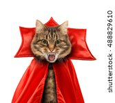 cat evil with fangs in red... | Shutterstock . vector #488829610