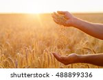 the hands of a farmer close up... | Shutterstock . vector #488899336