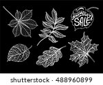 autumn leaves  hand drawing...   Shutterstock .eps vector #488960899