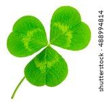 st. patrick's day shamrock... | Shutterstock . vector #488994814