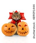 cat evil with fangs in red... | Shutterstock . vector #489091444