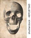engraving vector skull... | Shutterstock .eps vector #489187360