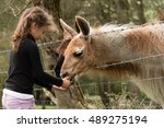 Young Girl Feeding Carrot To...