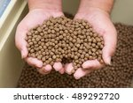 Small photo of Pellet fsh feed on hand.